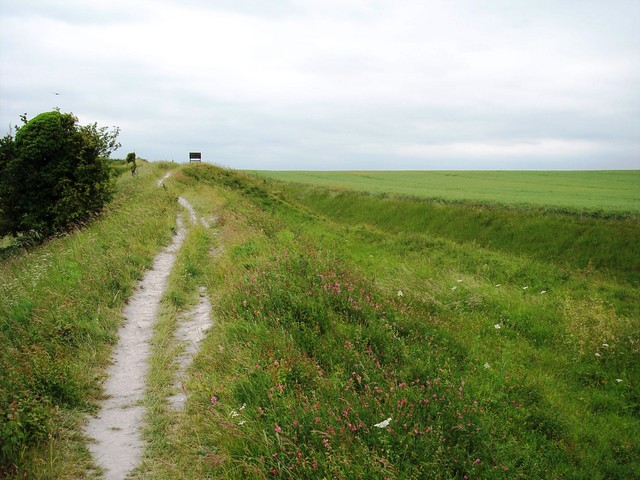 The Dyke is well preserved at Gallows Hill Burwell where it is 10.5 meters high from the ditch to the bank top.