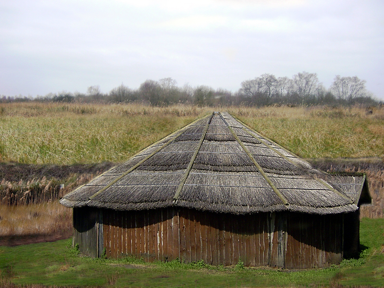 What a celtic dwelling in the fens may have looked like