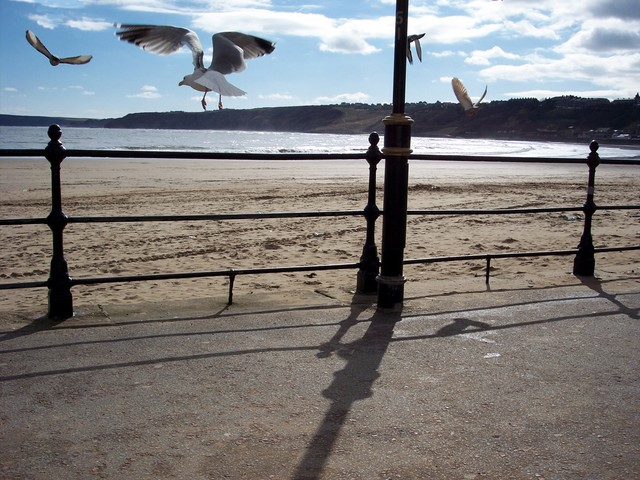 South Bay, Scarborough.  March 2005