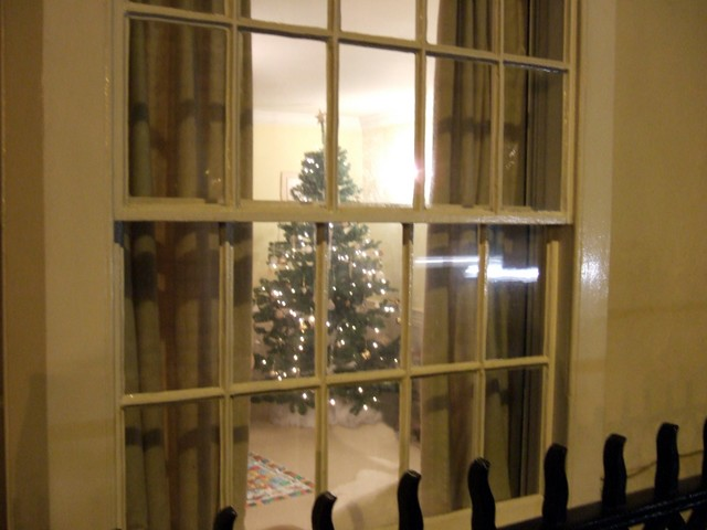 The Georgian Kings brought the first Christmas trees to the English court, but the custom did not take off until Queen Victoria married Prince Albert, who was German. In 1841, Albert set up a Christmas tree at Windsor Castle near London, to remind him of his homeland. The Victorians took up the cust...
