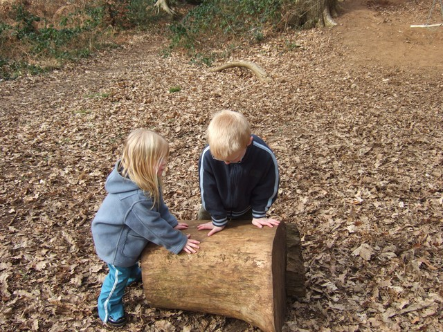 Rolling a big log. March 2006, Maulden woods