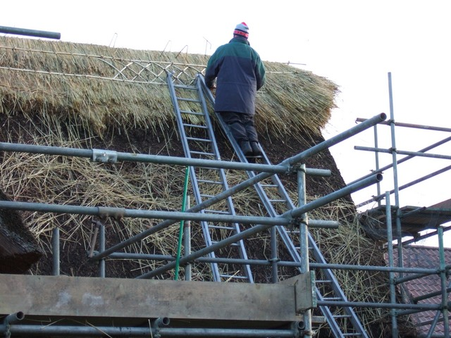 Thatching is one of the oldest roofing materials