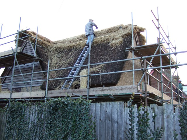 This picture shows a thatcher working on a cottage in Flitwick, Bedfordshire.