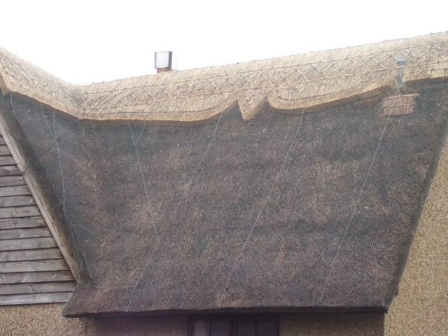 This picture shows a roof been re-thatched in Fliwick, Bedfordshire.