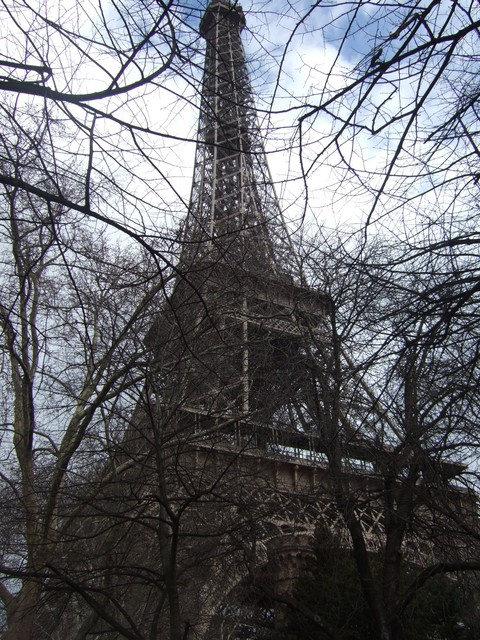 The Eiffel Tower was built in 1889 for the Universal Exposition celebrating the centenary of the French Revolution. Picture taken in Paris, France 31st March 2006.