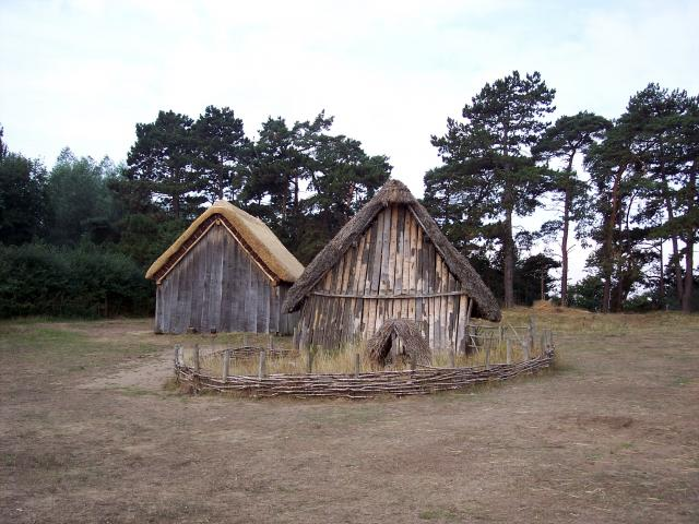 Picture of reconstructed houses at the site. This village appears to have comprised of two, maybe three, families - including relatives and slaves totalling about sixty people at any one time.  Each family had a Hall and a number of smaller, house type buildings.