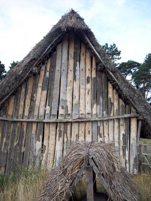 Excavations at West Stow showed evidence of around 76 buildings. Archaeologists used this evidence to reconstruct some of the homes. This house was built with the simplest technology in 1974. It tests the basic idea of a living floor above a pit (pits were found at the site). The roof is supported b...