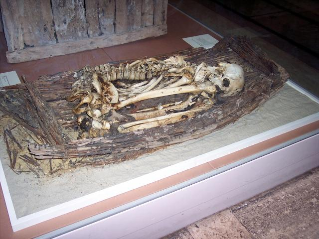 When the first coffins were introduced in Egypt, around 3000BC, this prevented direct contact between the body and the hot sand and so the body rotted. The natural mummification process was lost. This burial shows the skeleton and remains of an early basket work coffin. Picture taken at the British ...