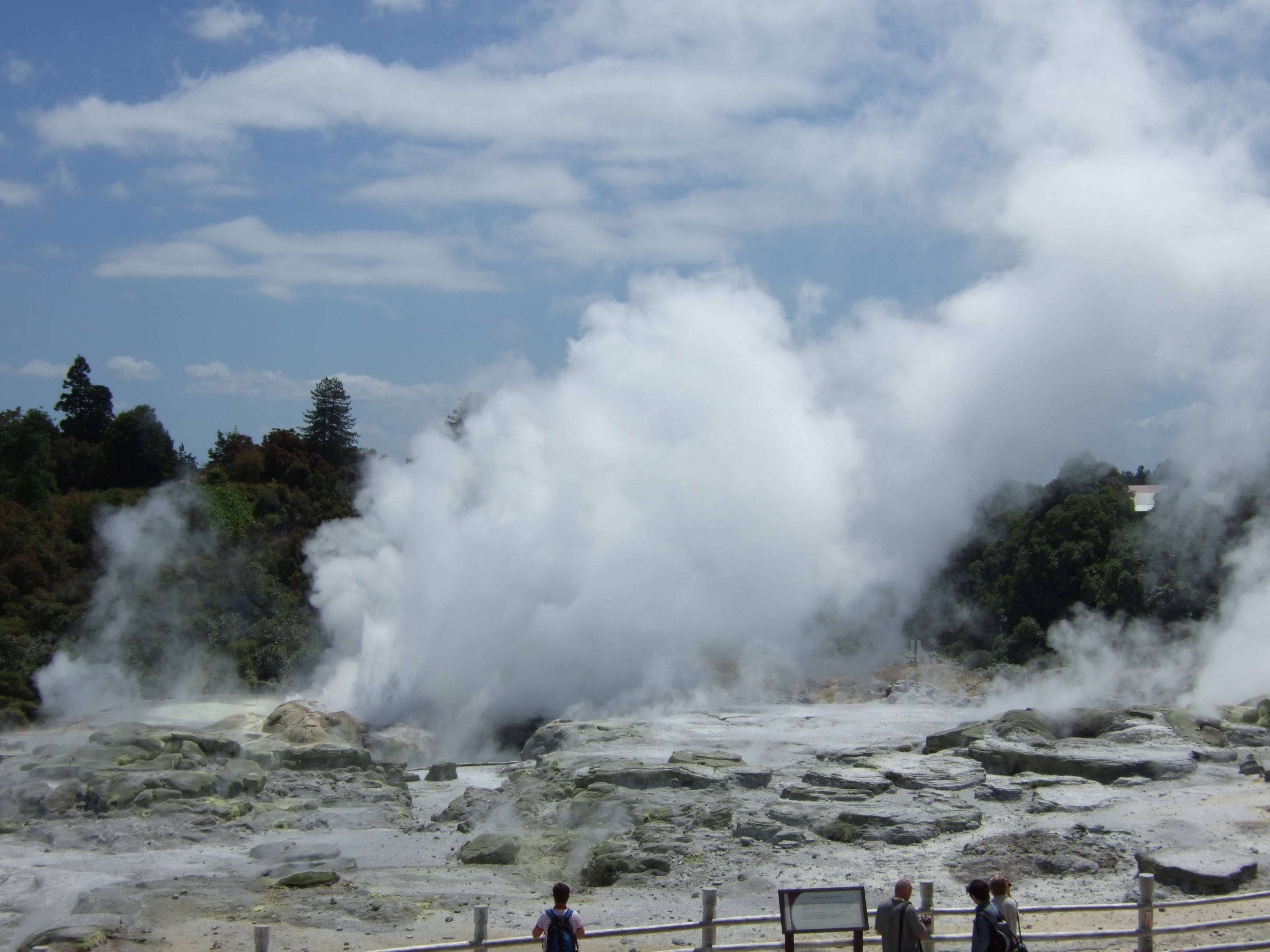 Te Apau geothermal area in Rotorua New Zealand has many geysers which erupt regularly throughout the day. These eruptions can last for up to half an hour and rise to a height of up to ten metres. Maori tribes who lived in the are would use the hot water pool to cook their food in.