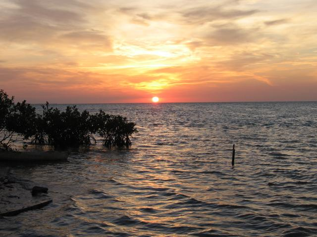 The sun setting at Caye Caulker, Belize