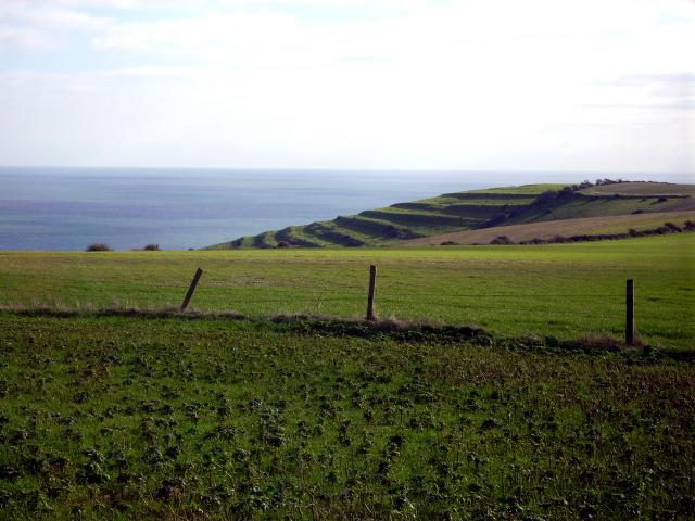 The terraces that can be seen in the fields in this photo, also known as 'strip lynchets', are a result of ancient field systems. 
