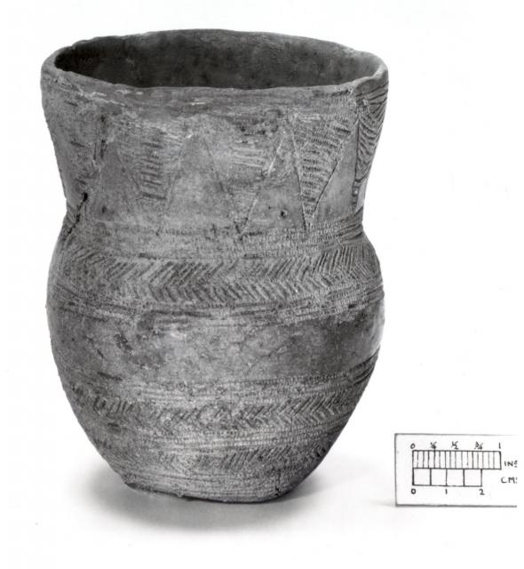 A complete Beaker period decorated pot from Kelling Heath, NHER 6227. What do you think they kept inside the pot? � Norfolk Museums & Archaeology Service.