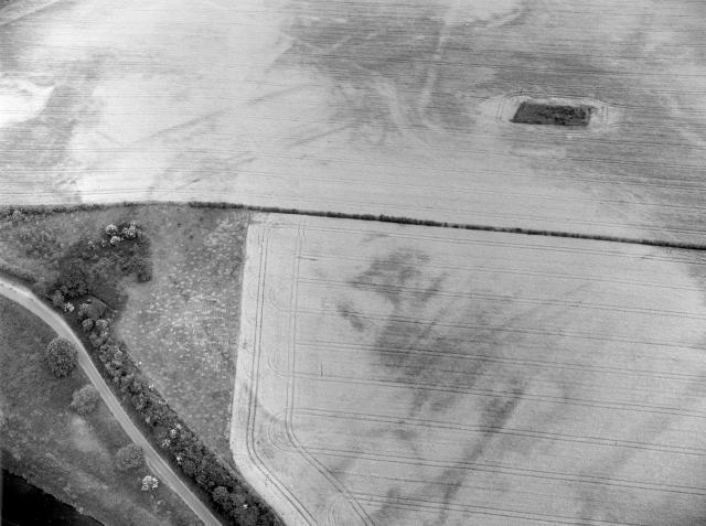 The three parallel ditches of the fort and the possible outer enclosure ditch can be seen on this aerial photograph. Can you identify these features on the photo? Copyright Norfolk Museums & Archaeology Service.