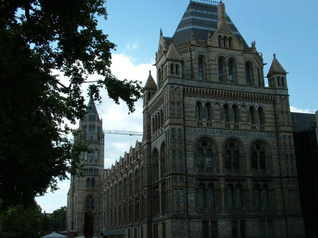 The Natural History Museum is in South Kensington, London. It is is one of three large museums on Exhibition Road. The museum is home to life and earth science specimens comprising some 70 million items within five main collections: Botany, Entomology, Mineralogy, Palaeontology and Zoology. Many of ...