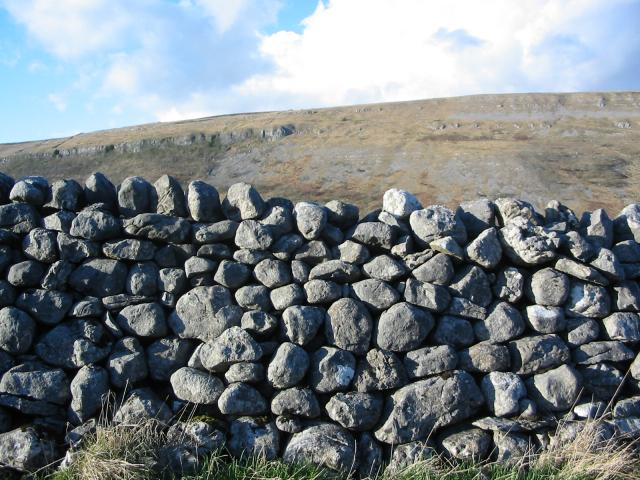 Carboniferous limestone in the Yorkshire Dales