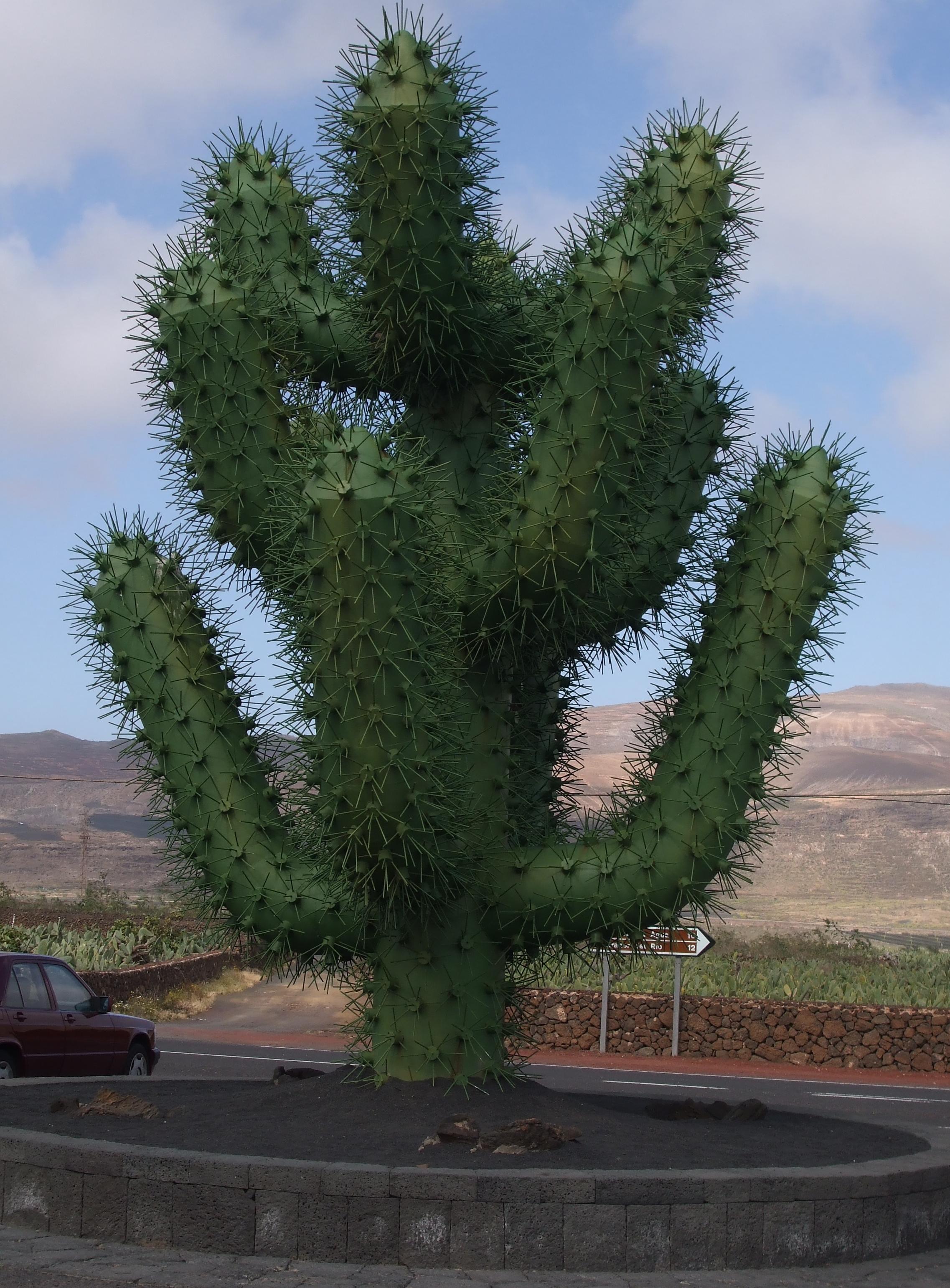 Giant 39 cactus 39 sculpture at the jardin de cactus in - Jardin de cactus ...