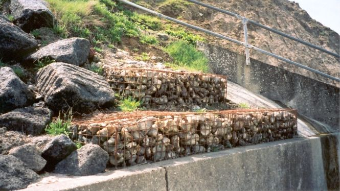 Gabion baskets for fences | stone wall cages | gabion1 uk.
