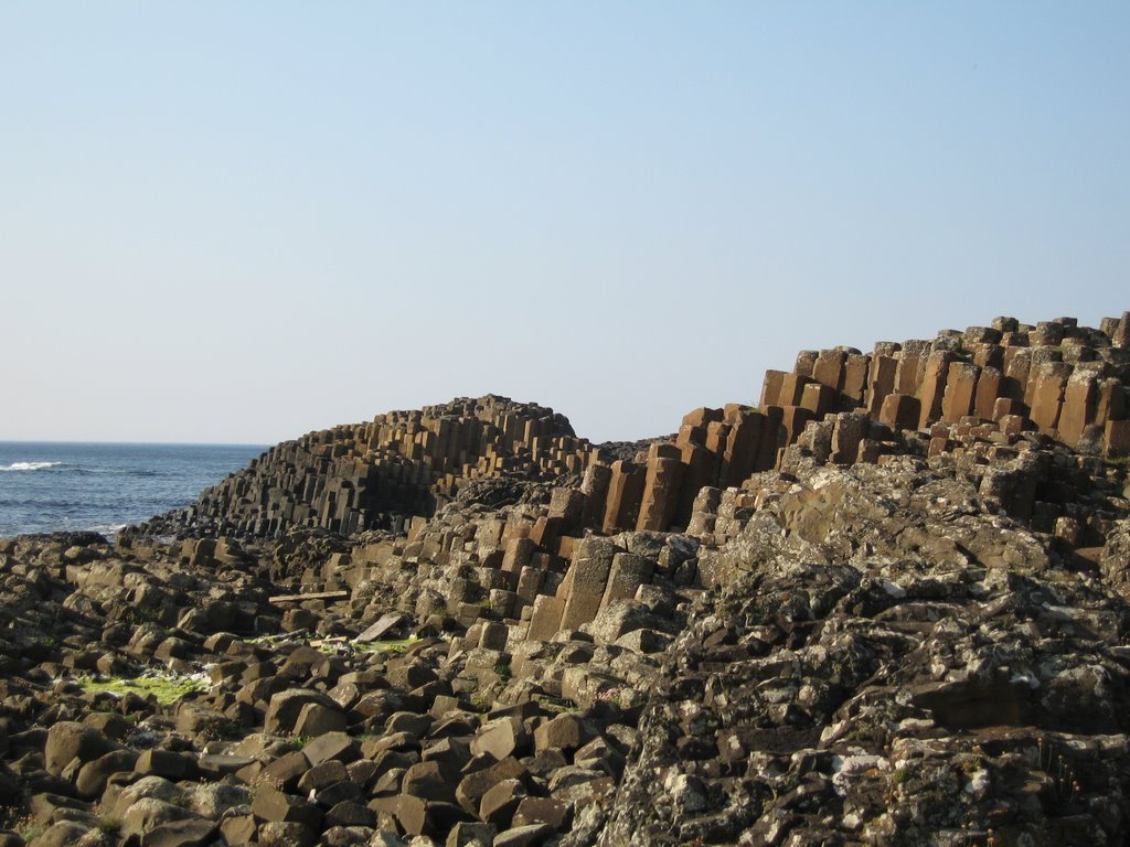 These basalt columns form part of The Giant's Causeway found in Northern Ireland. The columns lock together and were formed following an ancient volcanic eruption.  The Giant's Causeway was declared a World Heritage Site in 1986.
