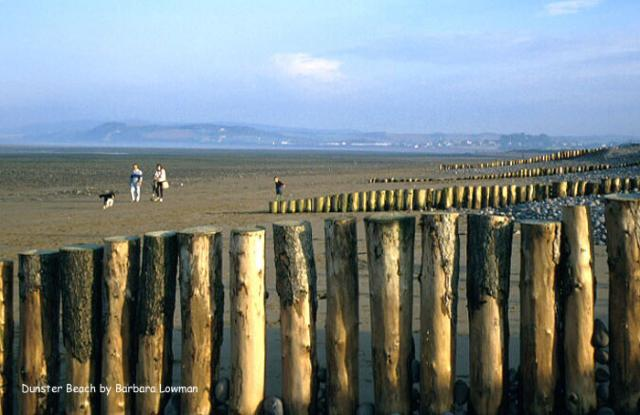 Wooden Posts on Dunster Beach