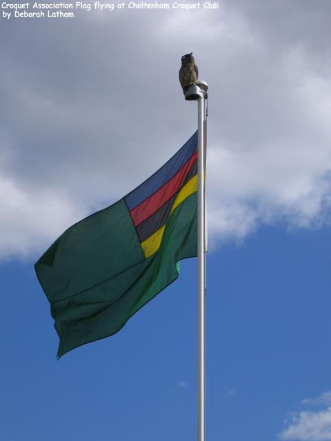 This flag, bearing the colours of the primary ball colours (blue, red, black and yellow) on a green background, is flown at all tournaments run by the Croquet Association (the national governing body of the sport of Croquet, including both Association Croquet and Golf Croquet, in England, Wales, Nor...