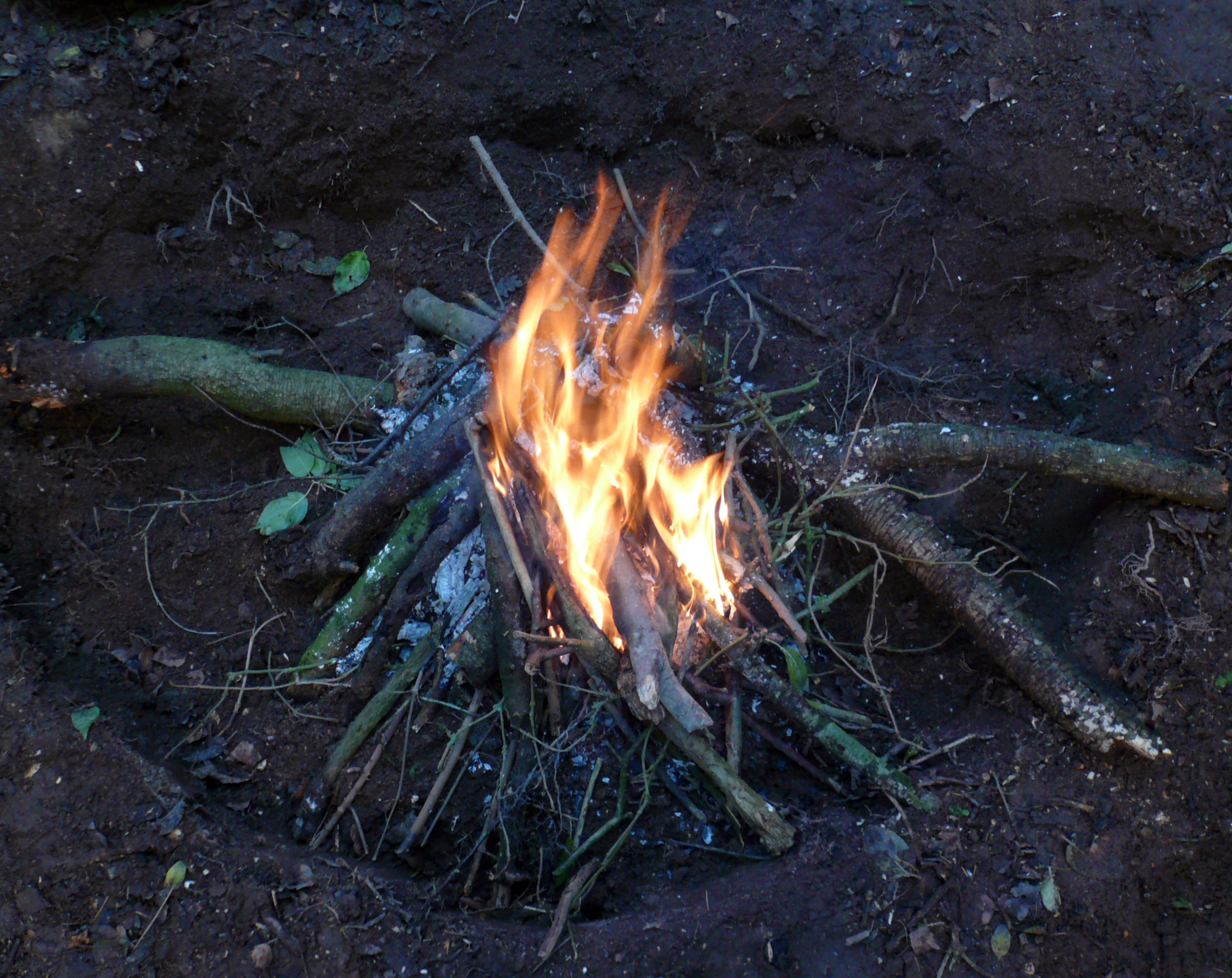 HedgeWatch Fire making -Paleolithic/Mesolithic:  HedgeWatch Fire...