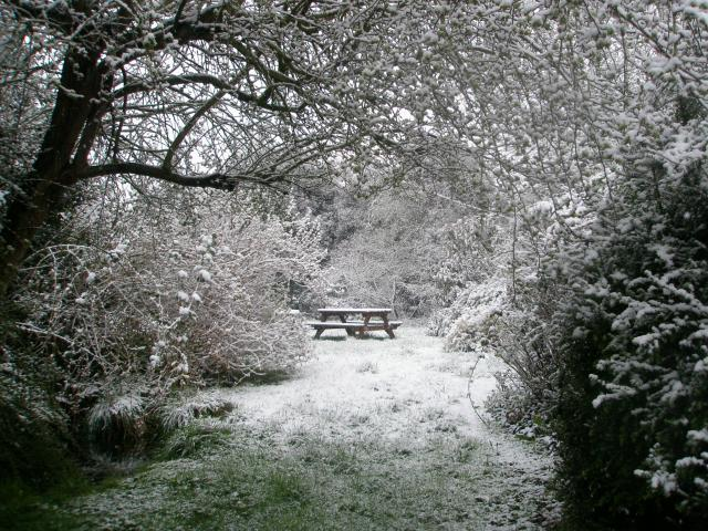 snowy garden in April 2008