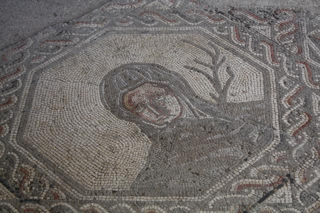 One of the many mosaic floors available to view at Bignor. The Romano-British villa was discovered by George Tupper, a local farmer, in 1811 when his plough hit a large stone. It is situated about 9 miles north of Chichester.