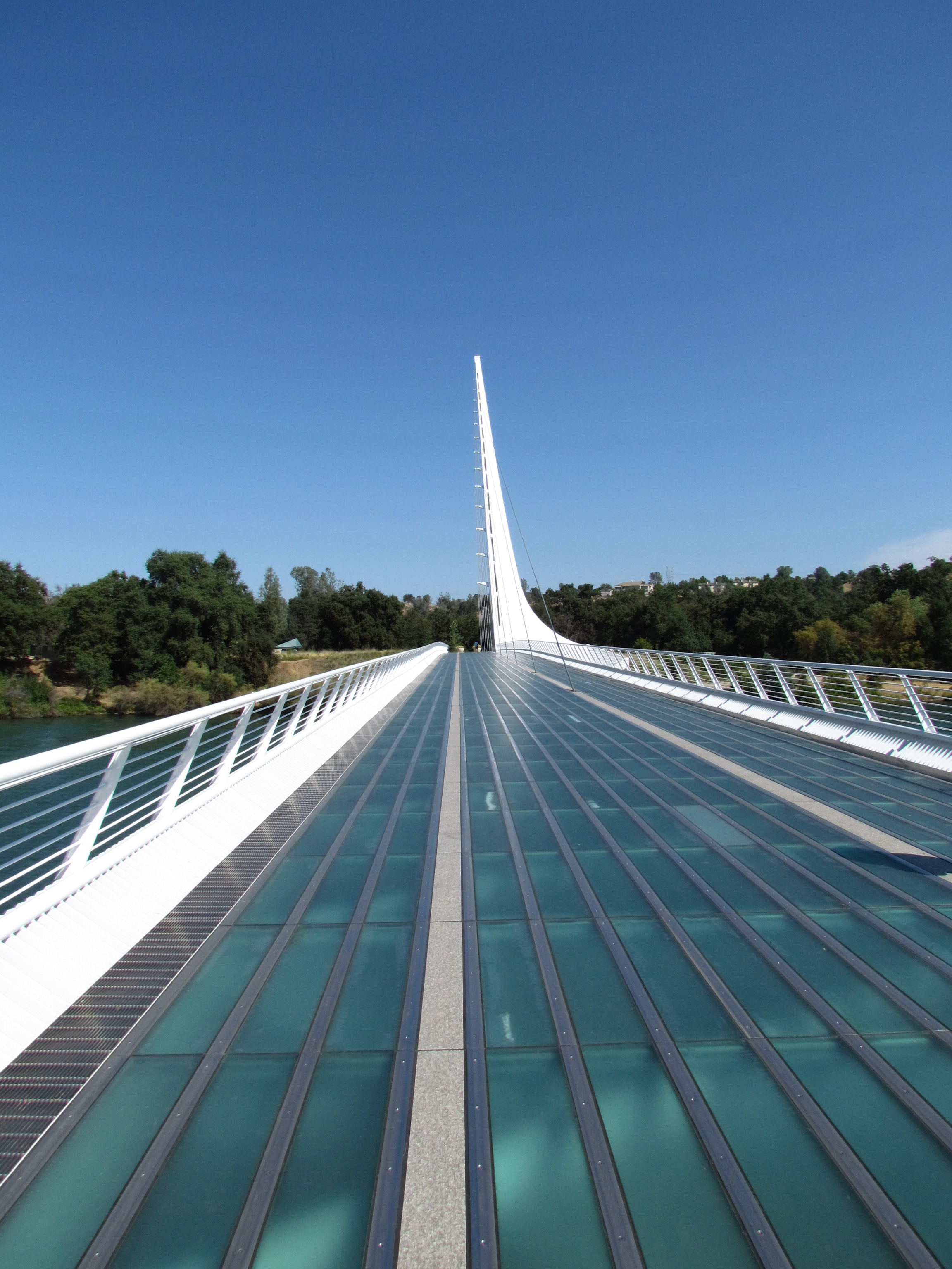 The bridge was designed by architect Santiago Calatrava. He described it as a goose in flight. The bridge was completed in 2004 and took 11 years to build. It cost 24 million dollars. It is 720 feet long and 23 feet wide. The bridge weighs 1600 tons, the same as 400 elephants. Although the bridge ca...