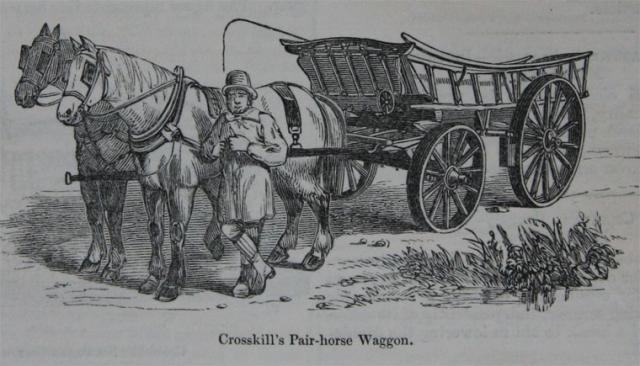 Crosskill's 'Pair-Horse Waggon' circa 1851, displayed at the 1851 Great Exhibition.