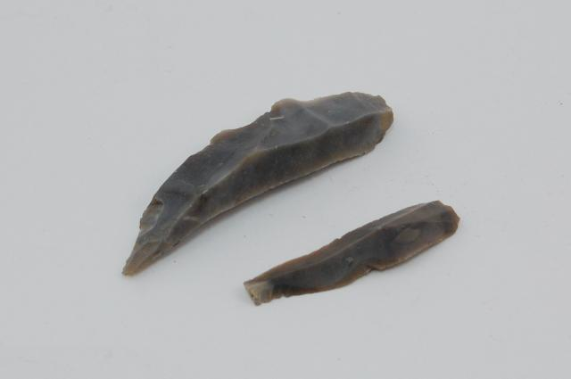 Two small flint bladelets knapped from a core.