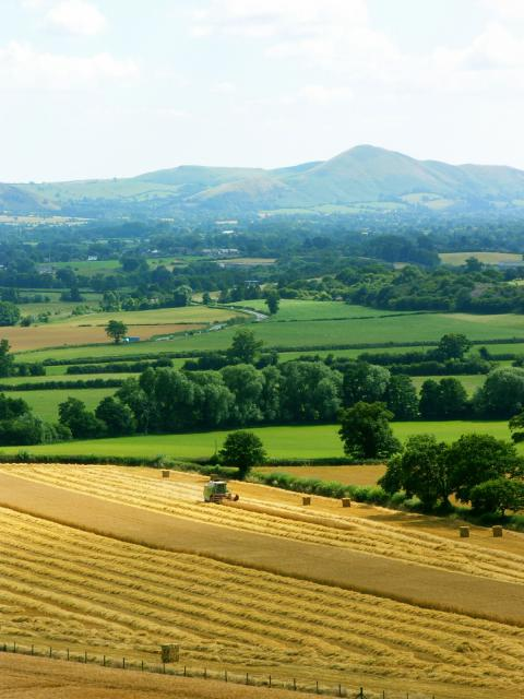 A view of Caer Caradoc from Lyth Hill, near Bayston Hill, Shropshire