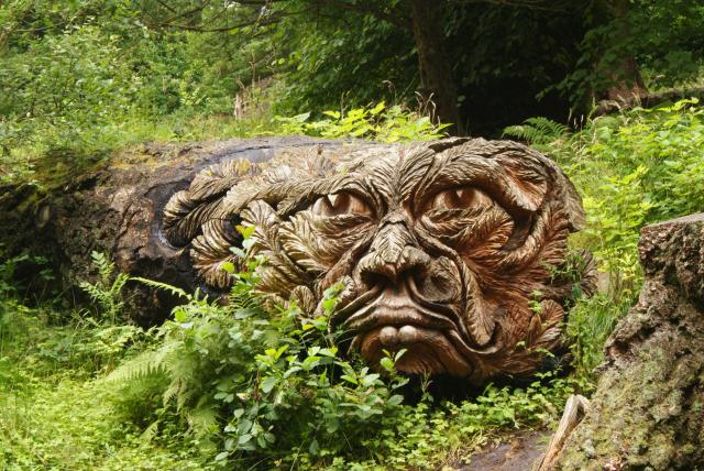 Cragside was the Victorian home of Lord Armstrong who was a Victorian inventor, innovator and landscape genius.  The house features examples of his innovation in hydro-electric power. The image shows a tree sculpture knowns as 'Douglas'